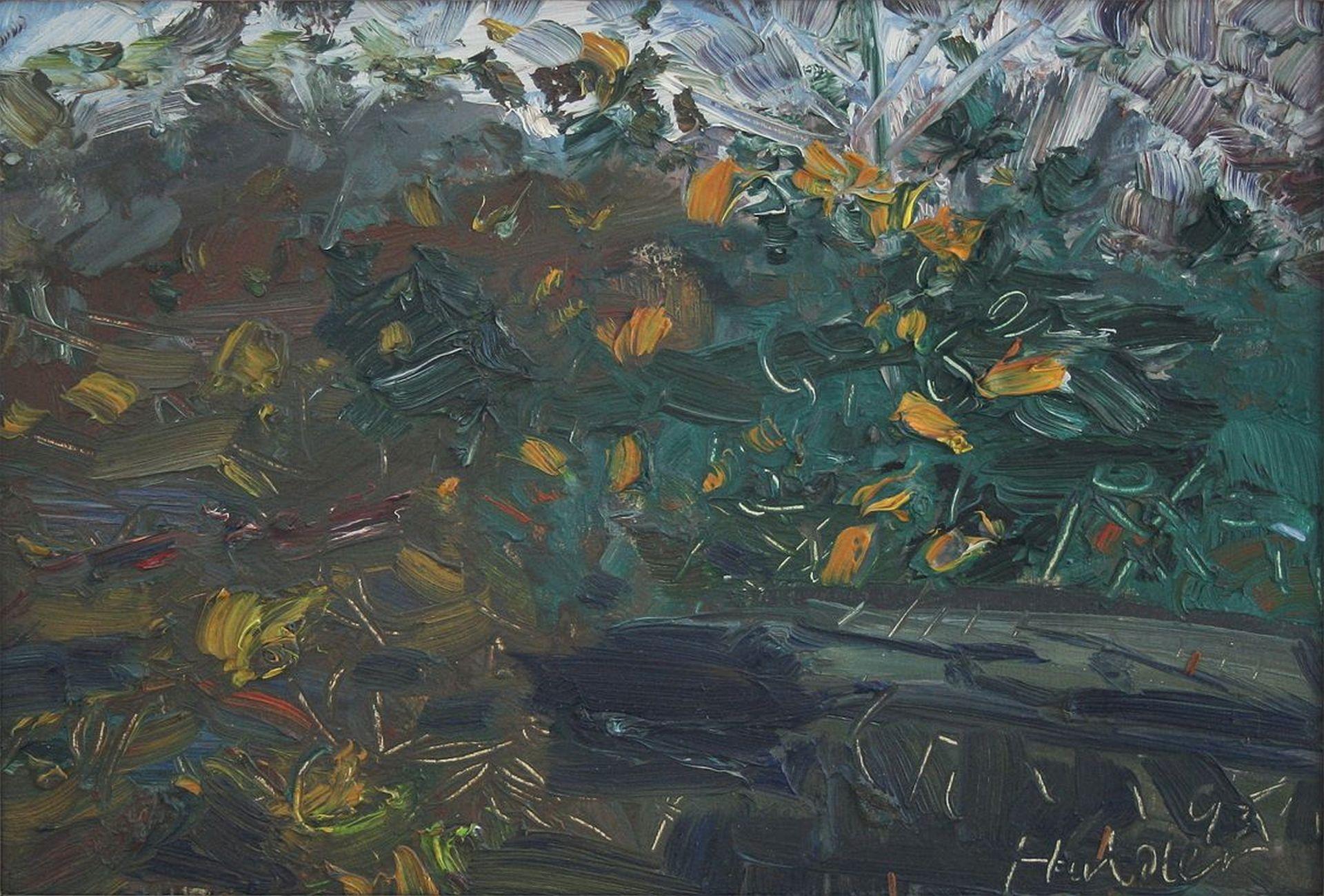 Hermann Haider-Flower meadow