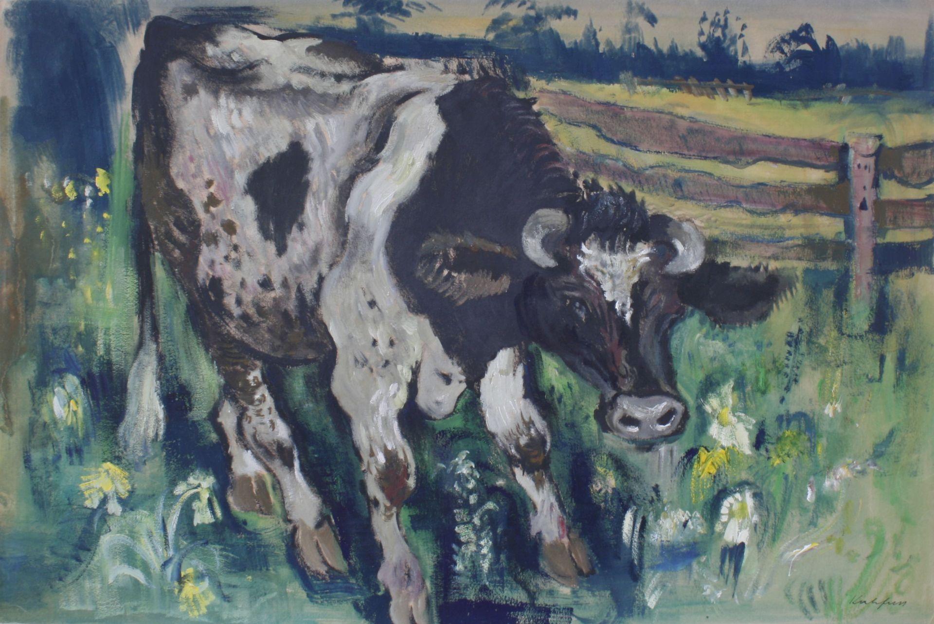 Paul Kuhfuss-cow