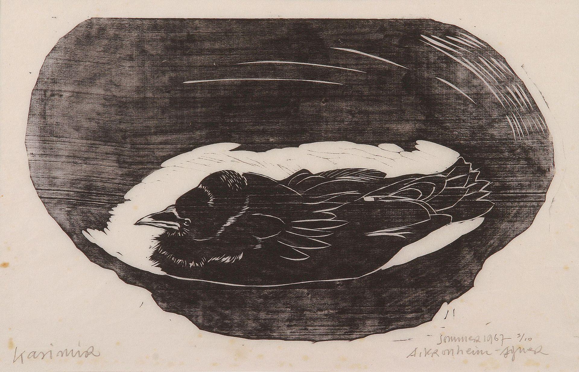 Auguste Kronheim-Casimir