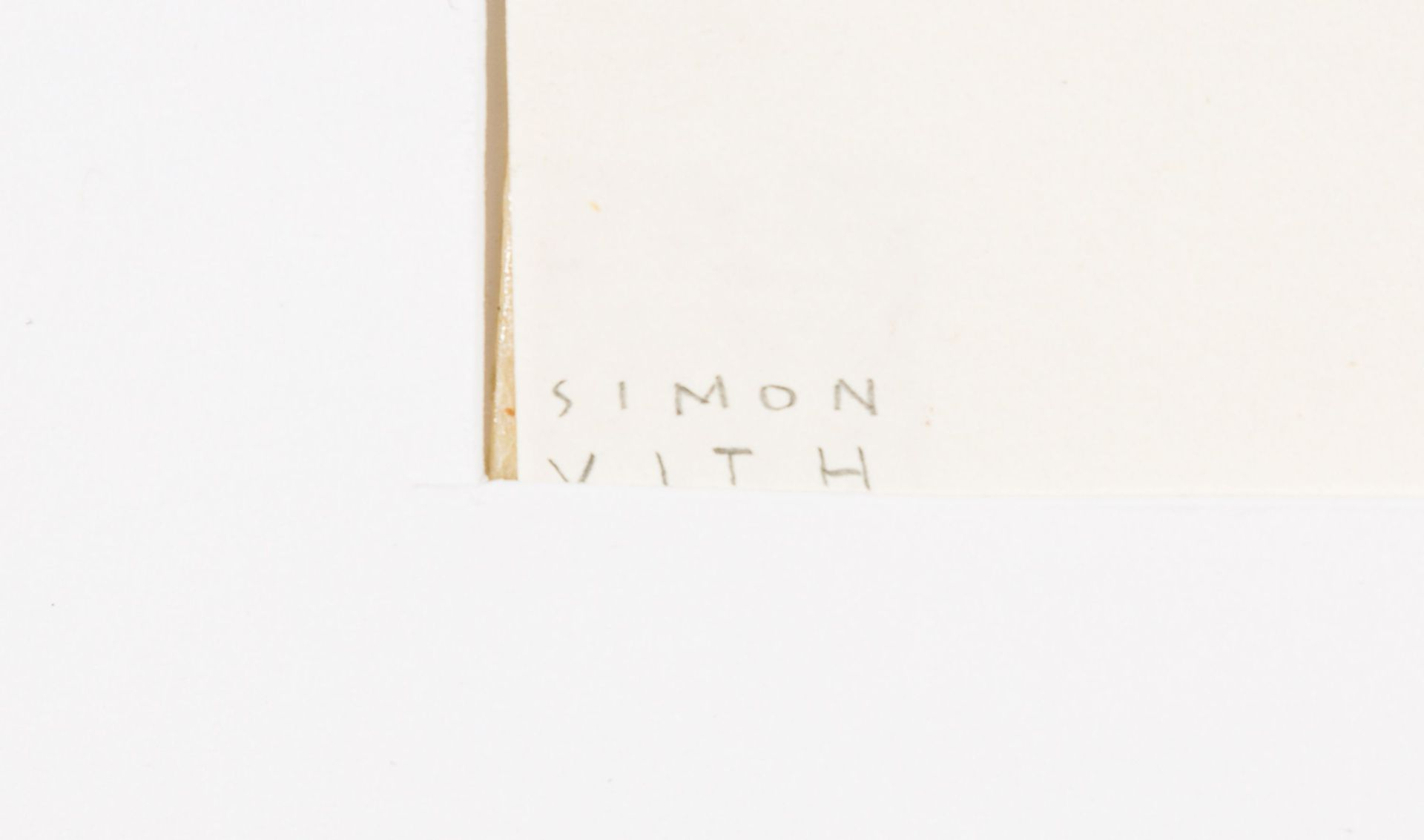 Simon Vith-Money launderer