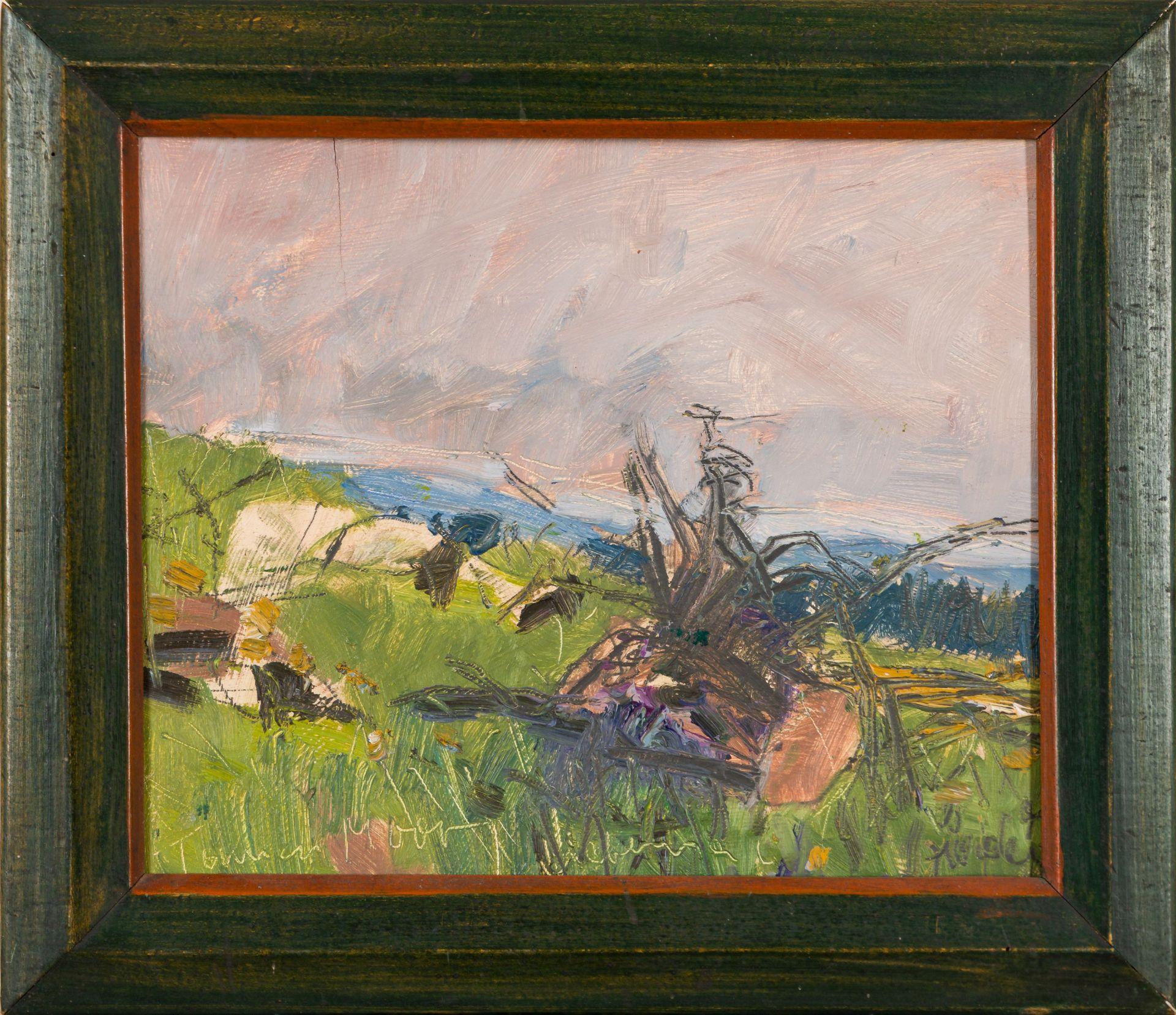 Hermann Haider-Tanner Moor