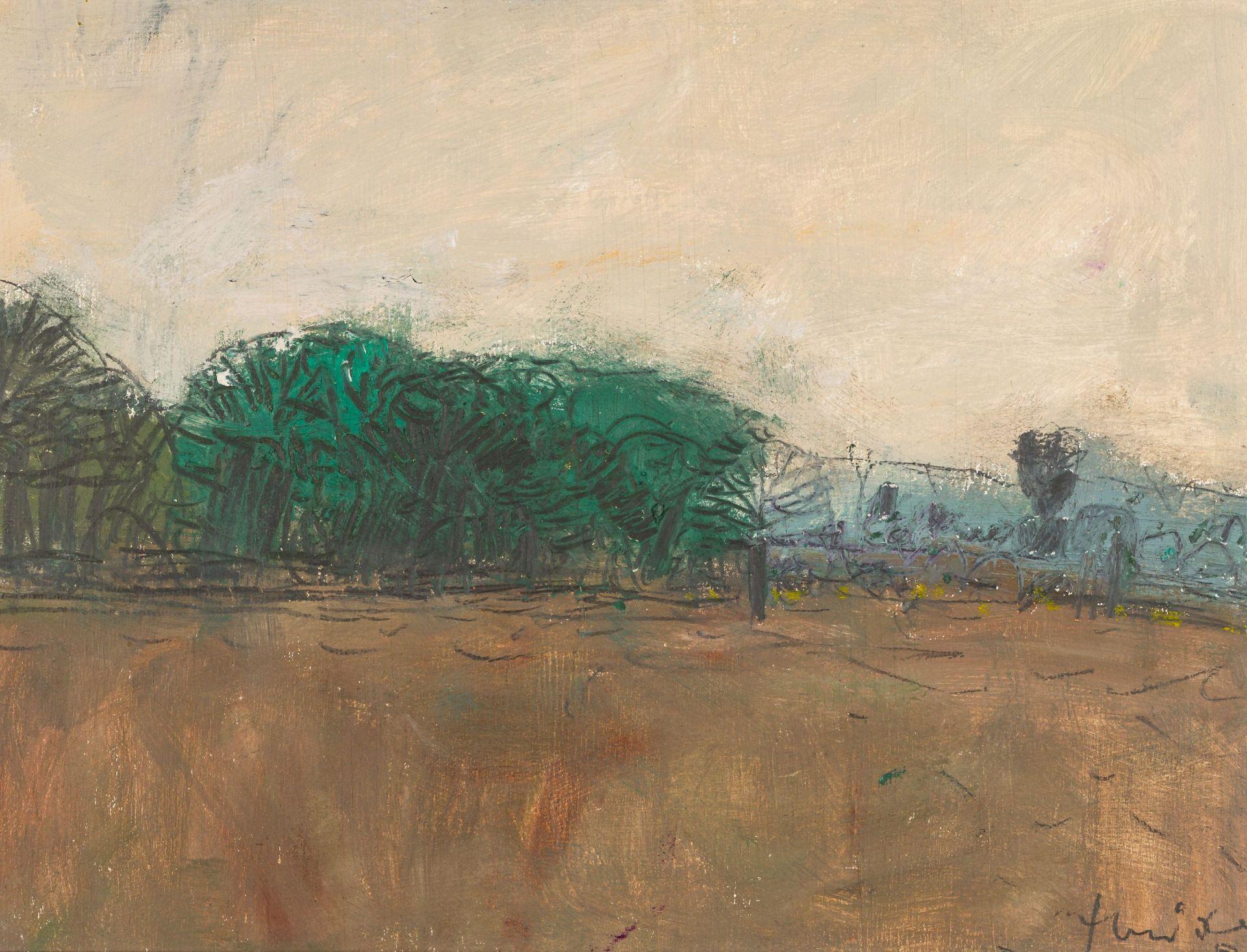 Hermann Haider-Landscape