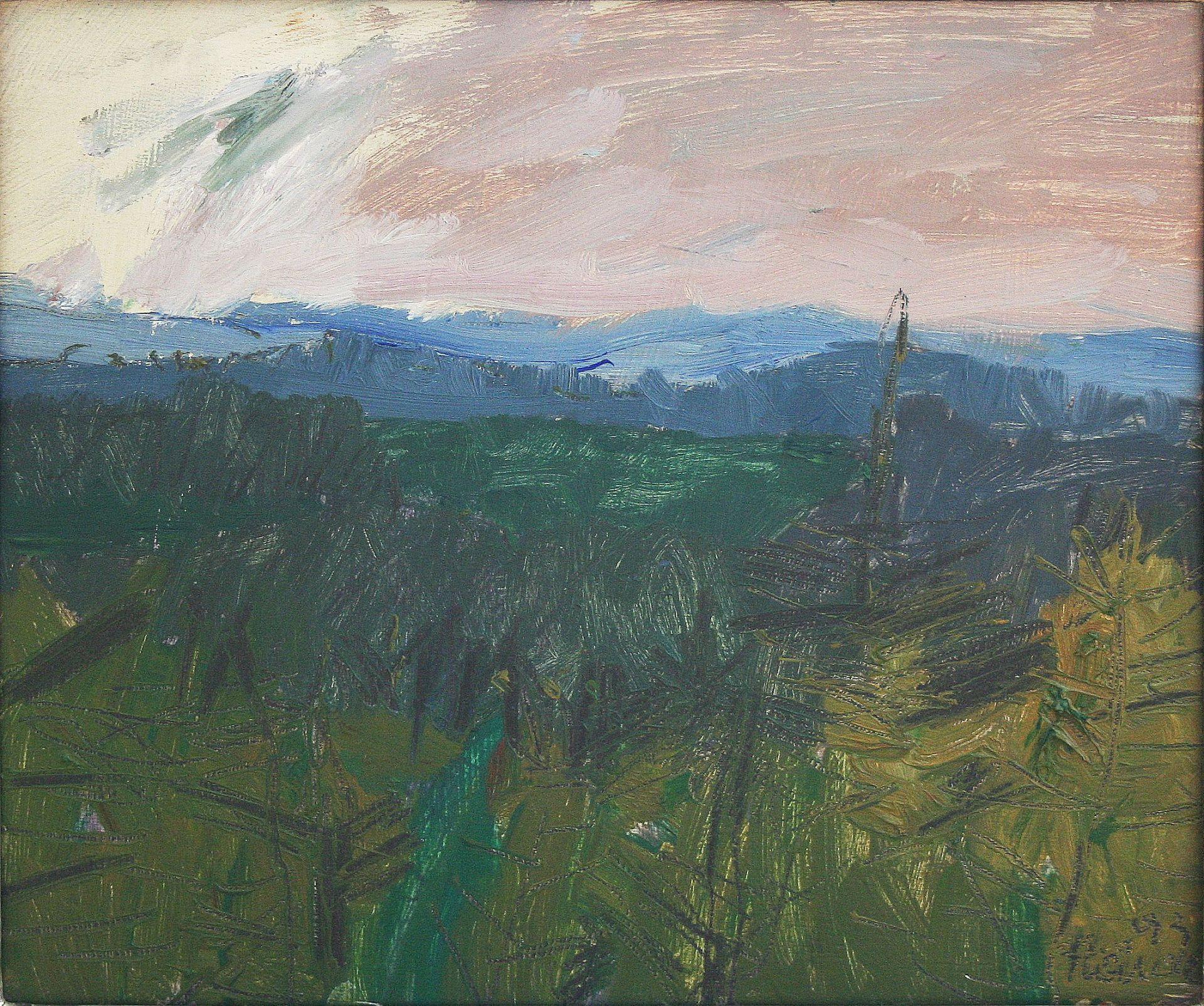 Hermann Haider-Tanner Moor near Liebenau