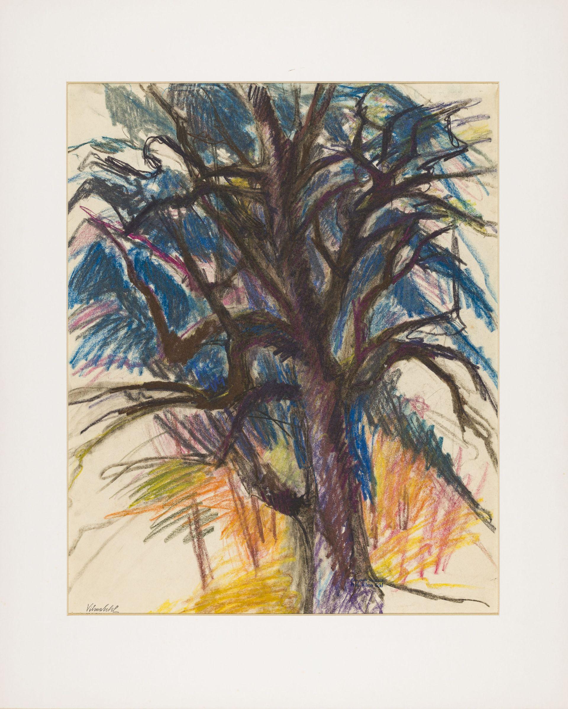 Vilma Eckl-Bare tree 1 (maple)